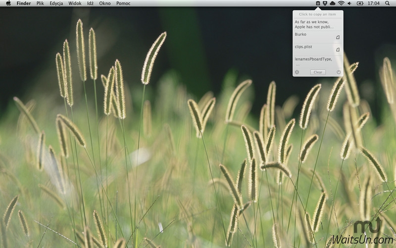 Nice Clipboard for Mac 1.1.0 激活版 – 剪贴板历史管理