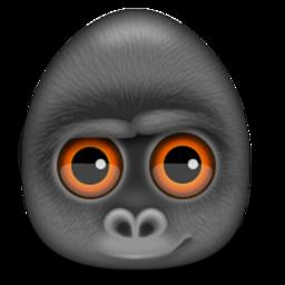 Debookee Mac 破解版 数据包抓取软件