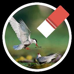 Magic Photo Eraser for Mac 1.6.1 激活版 – 简单实用的图片编辑修图应用