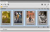 Adobe Design Premium CS5 官方简体中文版正式版┆破解补丁┆KeyGen┆下载